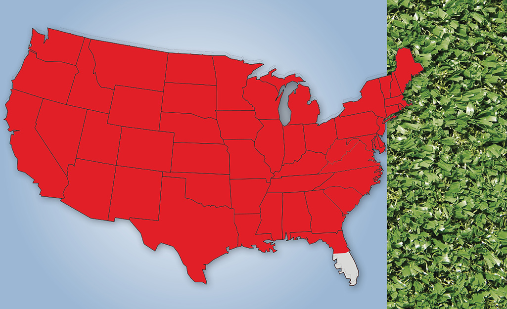 A map graphic shows the appearance and U.S. location of Rye grass.