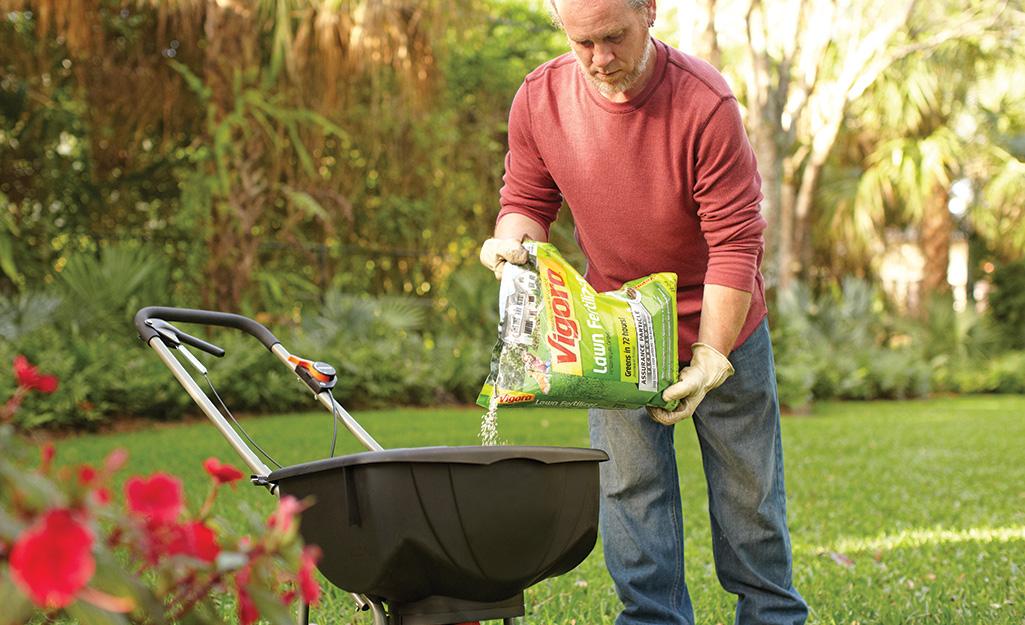 A man on a lawn pours fertilizer into a spreader.
