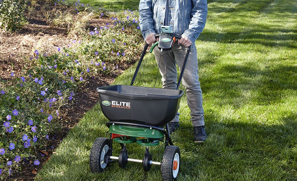 Someone using a broadcast spreader to fertilize a lawn.