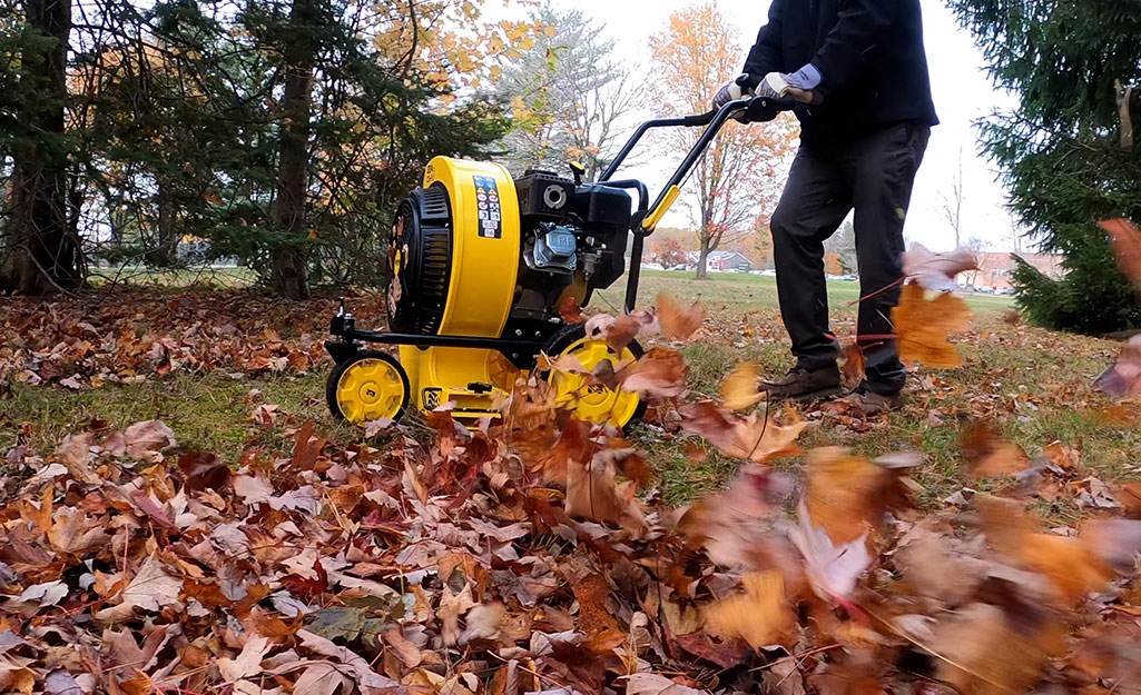 A worker clears leaves in a yard with a push blower.
