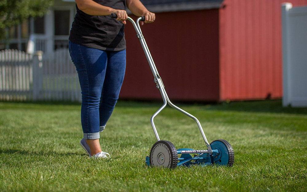 A woman using a reel mower.