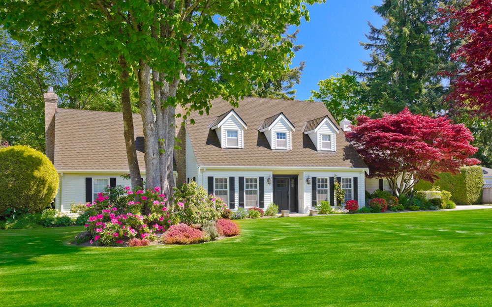 A house with a large, healthy front lawn.