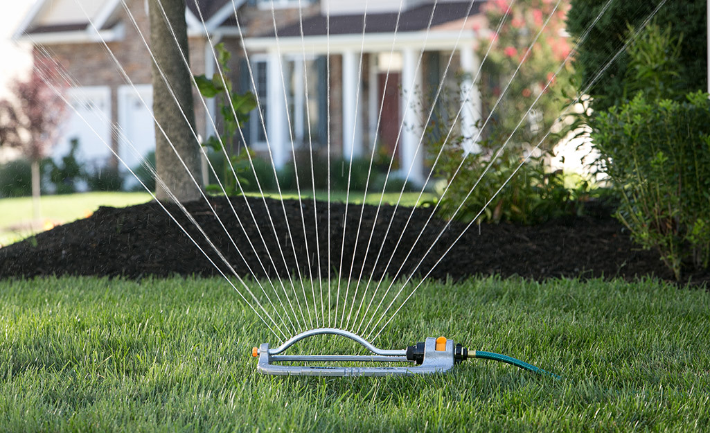 A sprinkler watering a lush lawn.