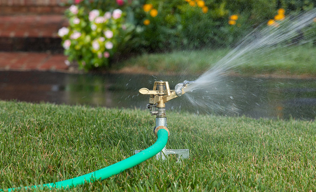 A sprinkler attached to a hose sitting in a yard.