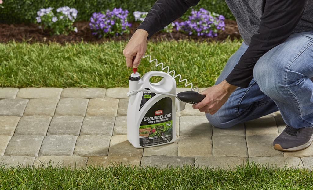 Ai đó gắn một cây đũa phép phun vào một chai thuốc diệt cỏ và cỏ.