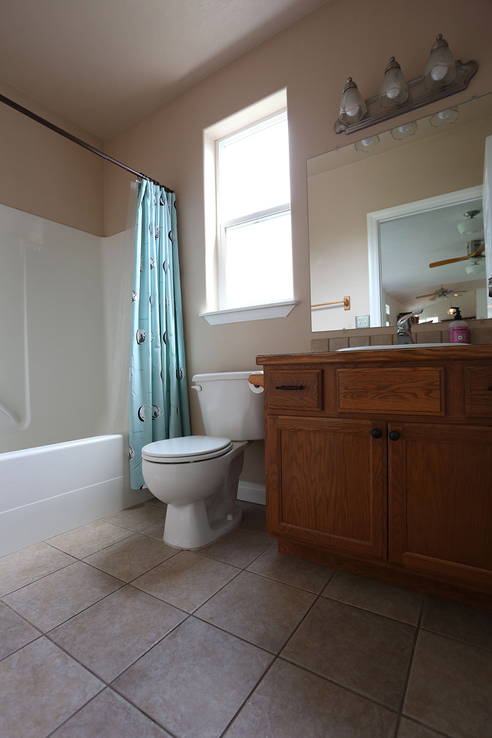 The bathroom before the renovation.