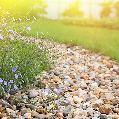 Build a Dry Creek Bed that Rocks