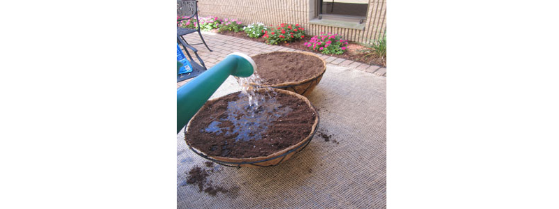Fill Planter with Soil
