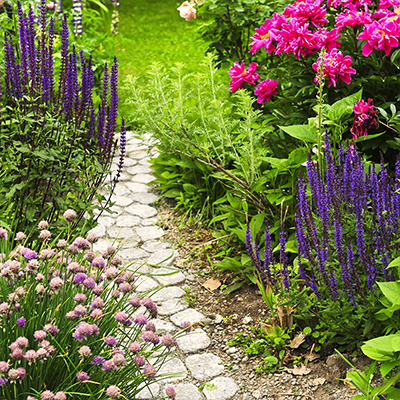 Build a Better Landscape This Year With These Projects
