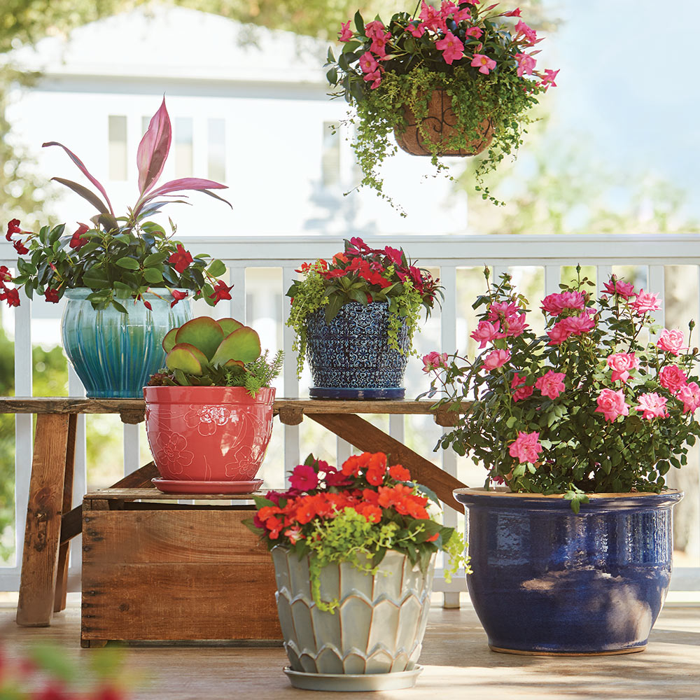 Container Garden Ideas The Home Depot