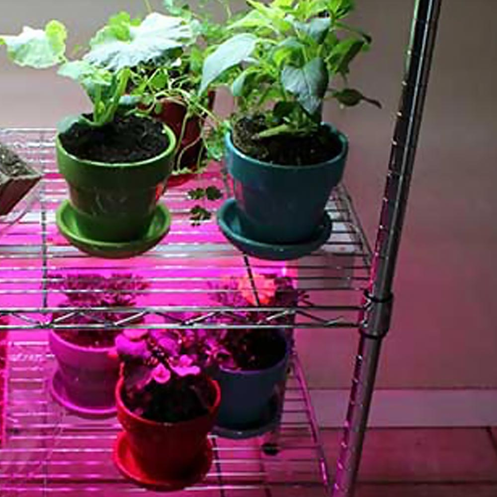 Create A Diy Indoor Grow Light System The Home Depot