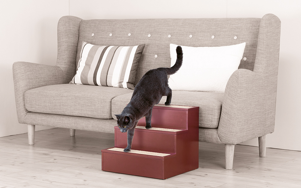 Cat using DIY cat steps to climb down from a sofa.