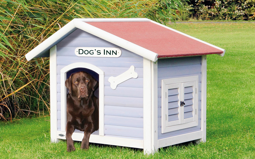 A dog in the doorway of a dog house.