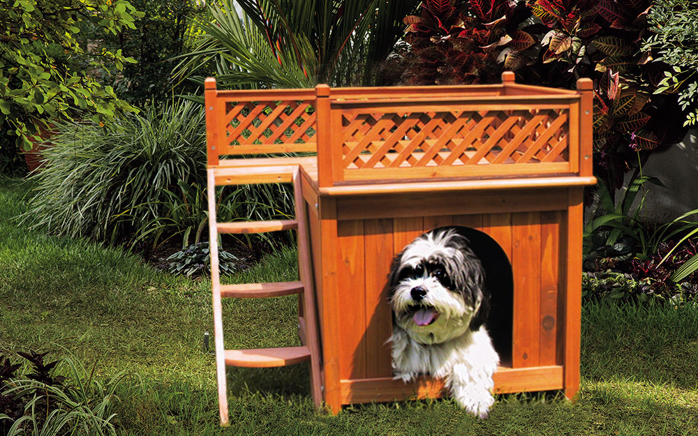 A dog resting in the doorway of a dog house with a deck on its roof.
