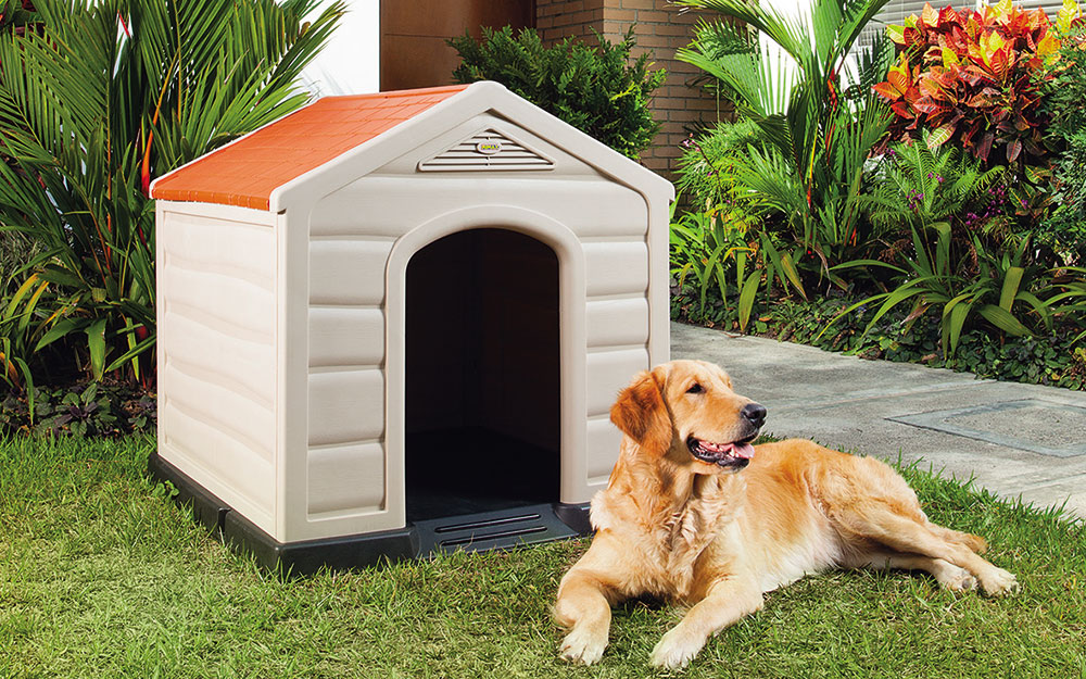 A dog resting outside of a dog house.