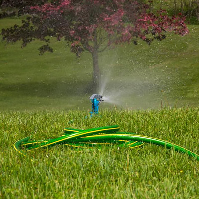 Don't Forget to Water Trees and Shrubs in the Fall