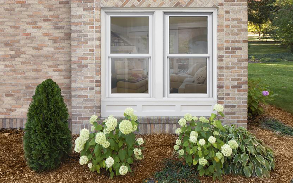 A house's double-hung egress window can open onto a yard.