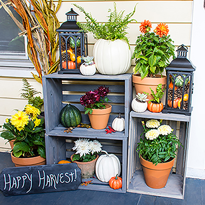Fall for Style: DIY Last-Minute Decor