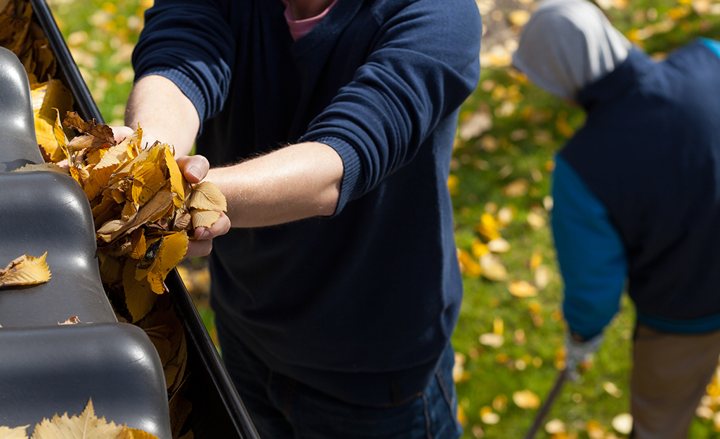 Person placing leaves in a bin.