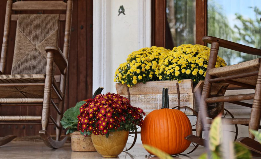 A front porch with mums and pumpkins displayed.