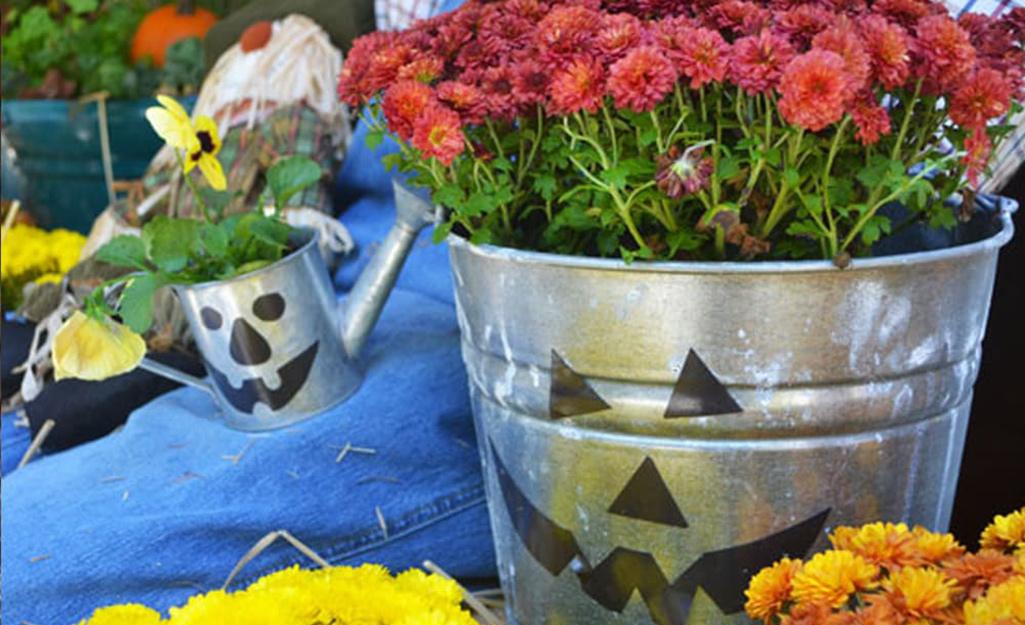 A pail turned into a planter and Jack o' lantern.