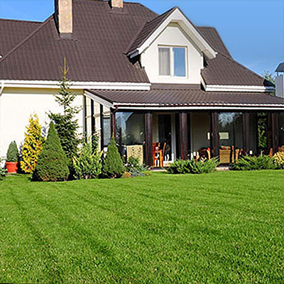 Feed Warm-Weather Lawns Now for Lush, Green Grass