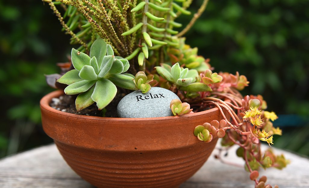 Terra cotta planter filled with succulents
