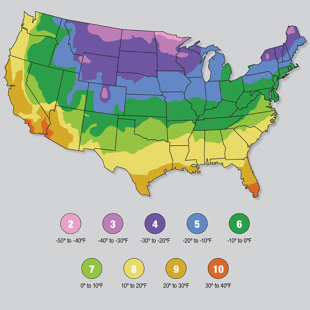 Find Your USDA Plant Hardiness Zone