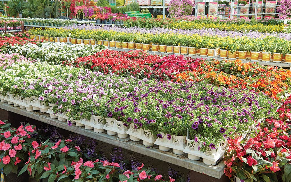 Flower Bed Ideas The Home Depot