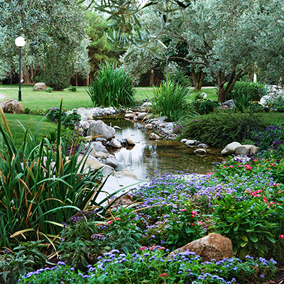 Landscaped yard with water feature.