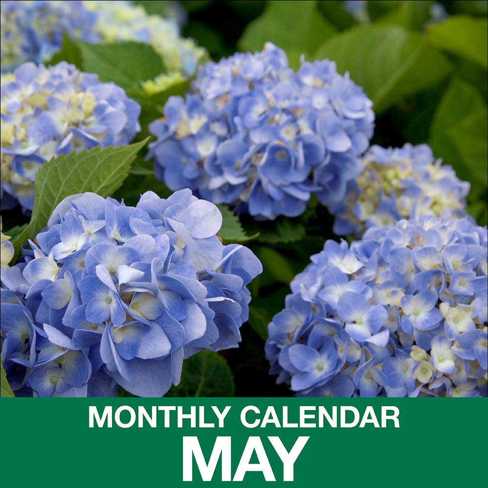 Gardening Calendar for May