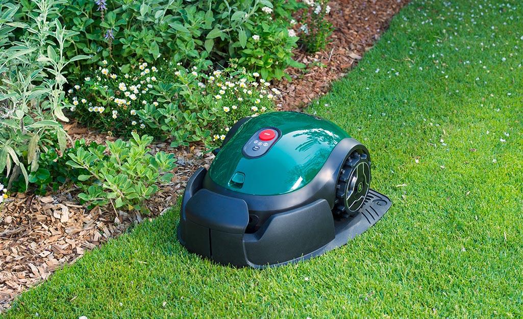 Robot lawn mower on grass