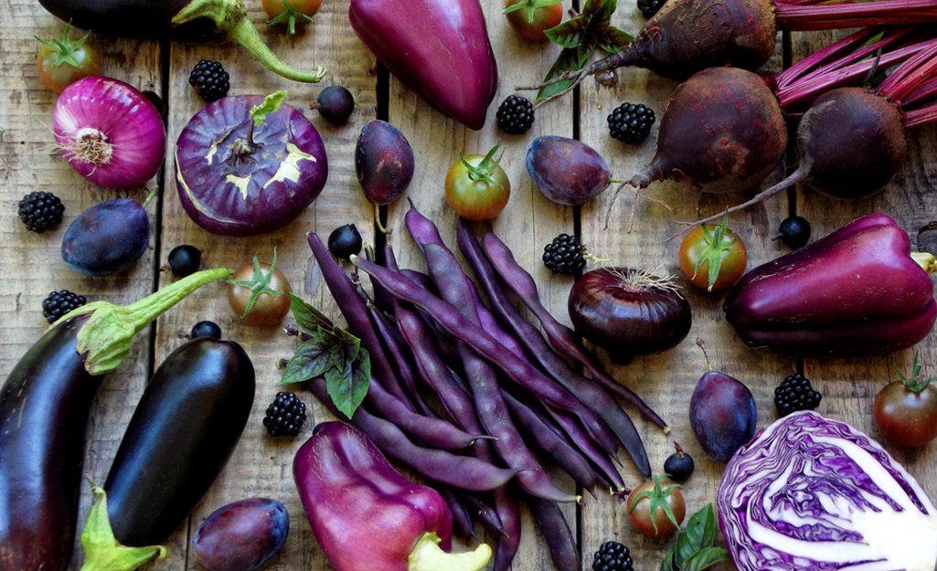 Purple eggplants, bell pepper, cabbage, beets and beans