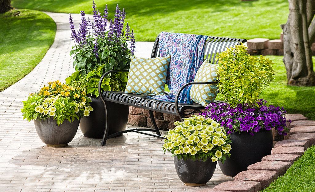 Ornamental pots with flowers by a garden bench