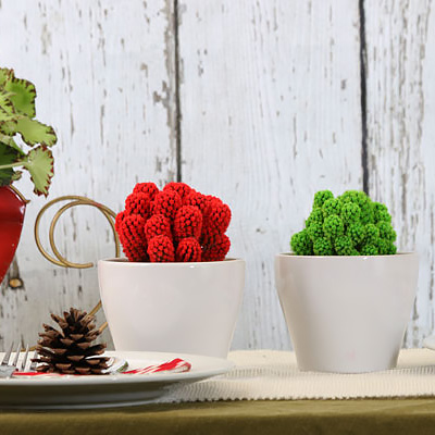 Gifts for Gardeners under $20, $50 and $100