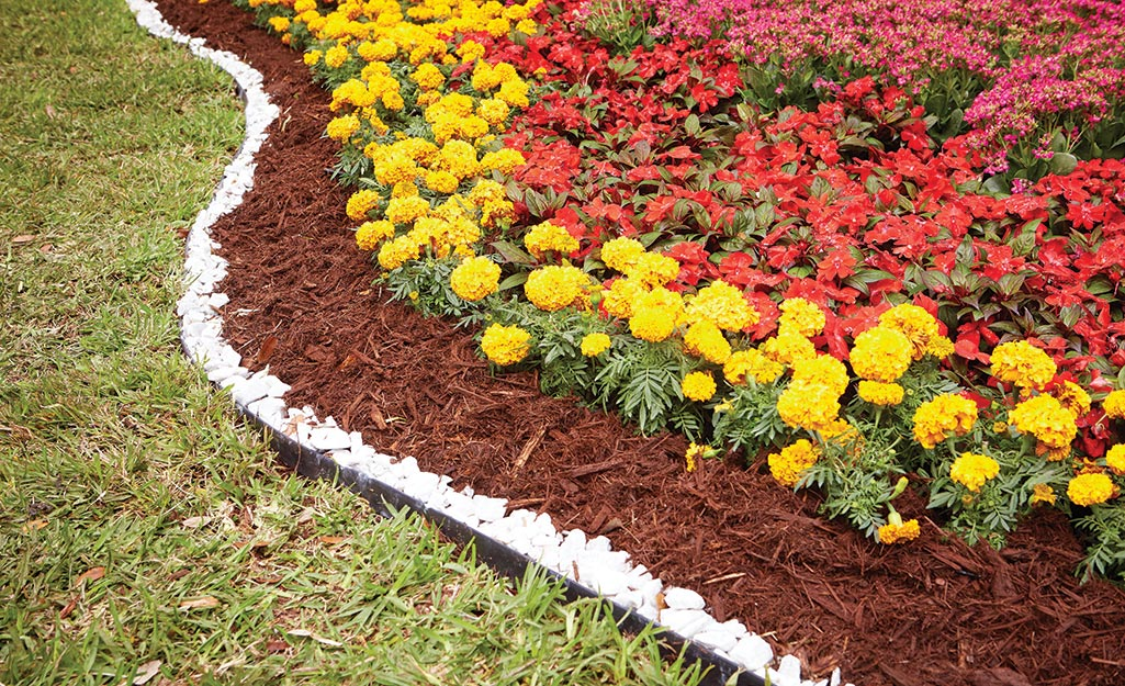 Flower bed bordered with mulch