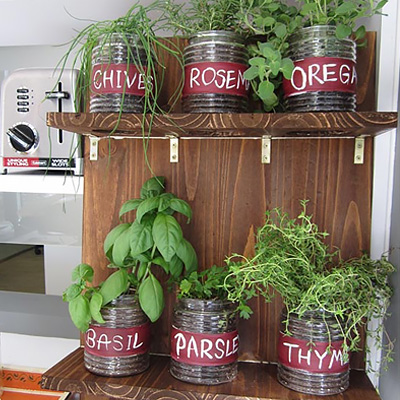 Grow an Indoor Garden With Fresh Herbs