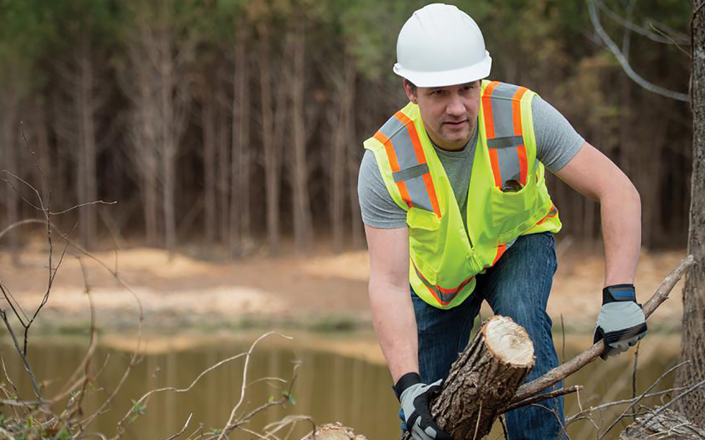 person doing forestry work wearing a white hard hat