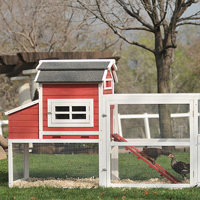 A red chicken coop next to a tree.