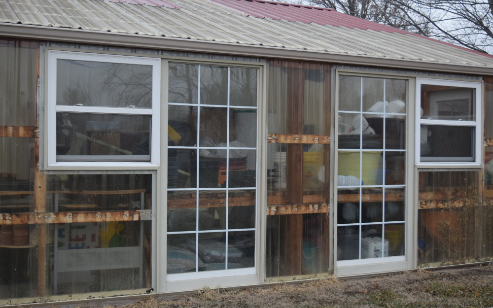 DIY greenhouse built with old windows and wood.