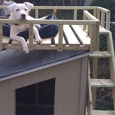 A dog house with sun deck