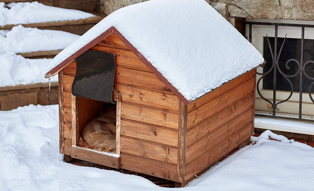 A dog in its insulated dog house in the winter.