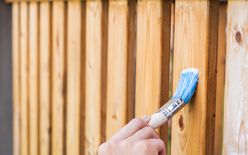 A person stains a new fence with a paintbrush.
