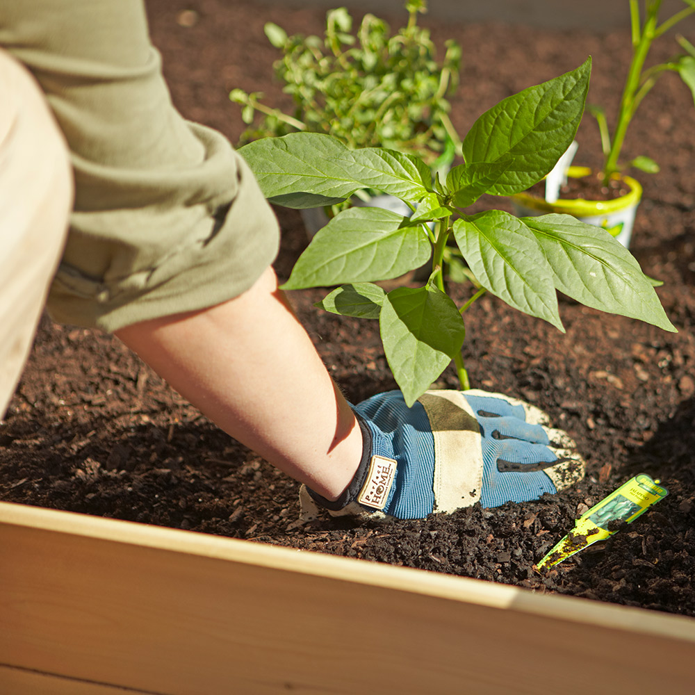 How To Build Raised Garden Beds The Home Depot