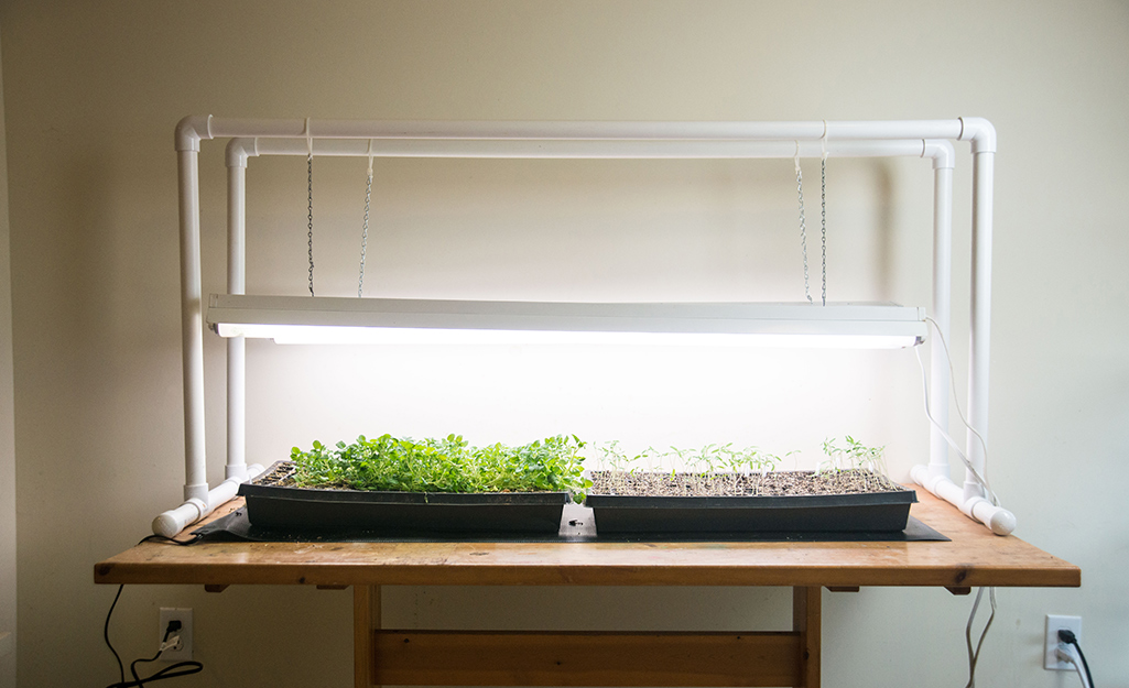 Seed starting station with grow lights