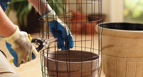 Shape wire fencing cylinder - Build a Flower Tower