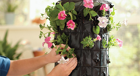 Add flowers - Build a Flower Tower