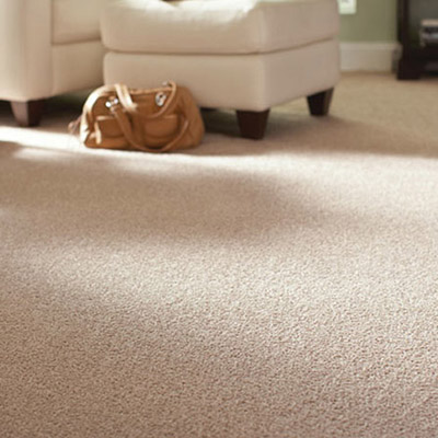 carpet replacement cost nz