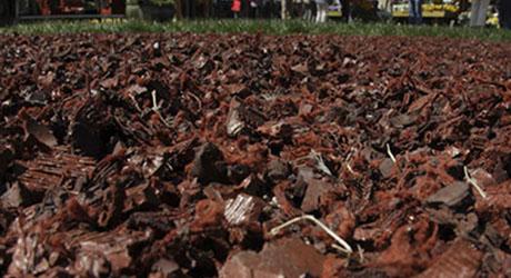 Rubber Mulch - Mulch Buying Guide