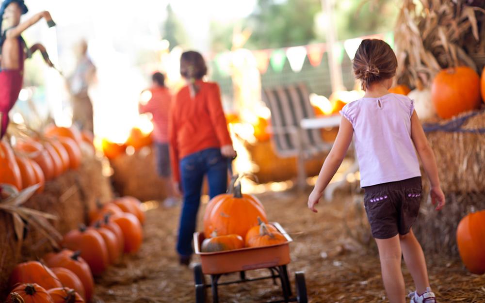Children with a wagon full of pumpkins at a pumpkin patch.